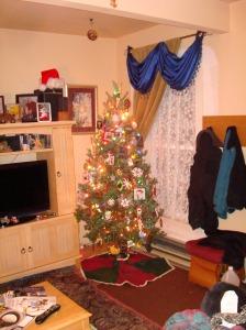 2013 Yule tree